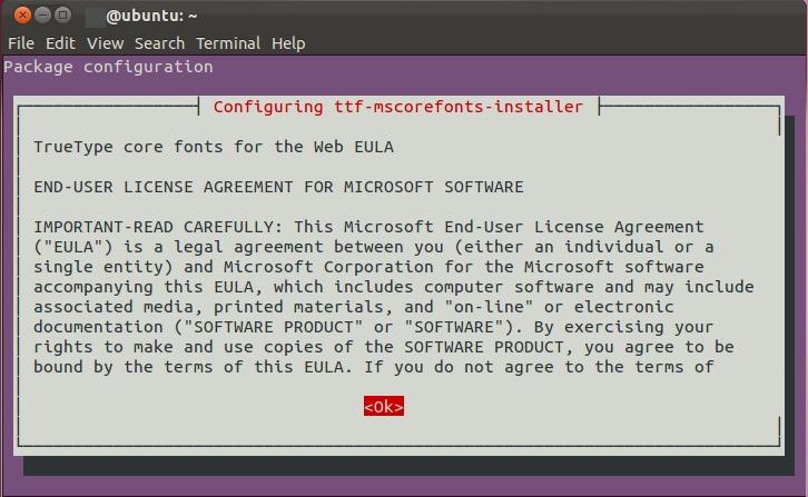Instalar Fuentes Windows en Ubuntu y derivados y solución al error ttf-mscorefonts-installer.